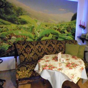 Herbaciarnia Asia 14